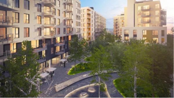 越来越密集的城市中-胶合木所扮演的角色