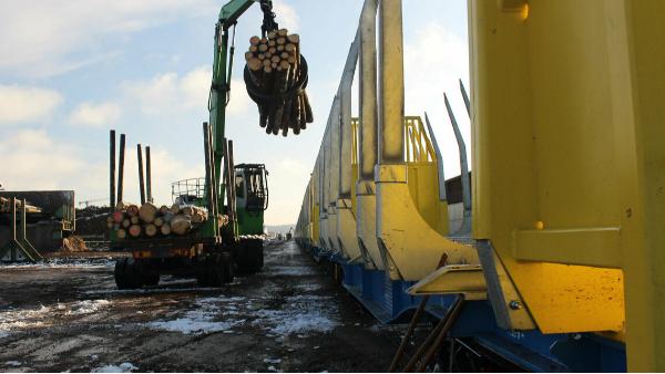 胶合木为什么在未来城市建设很重要?