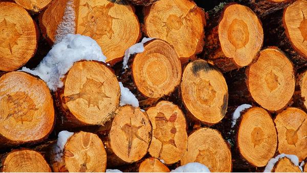 在四川使用樟子松防腐木做家挺装修有什么好处?
