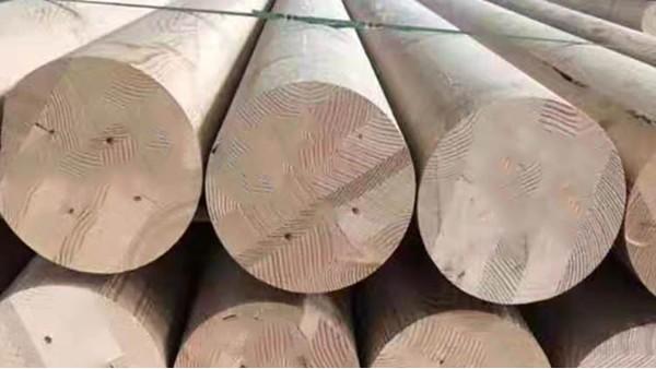 怎么判断标准胶合木?