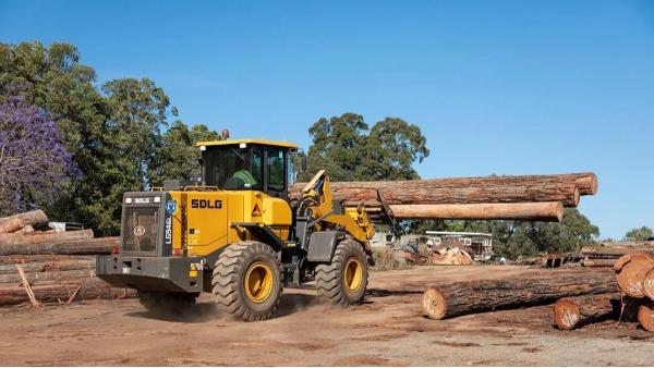 20年我国进口木材总额达160亿美元,大约下降11.8%。