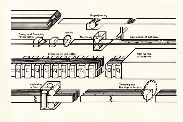 胶合木生产过程