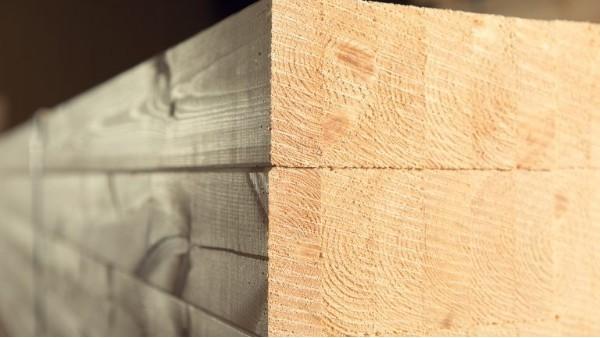 胶合木的发展前景-新弘瑞森