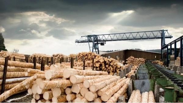 木材是建筑材料的未来
